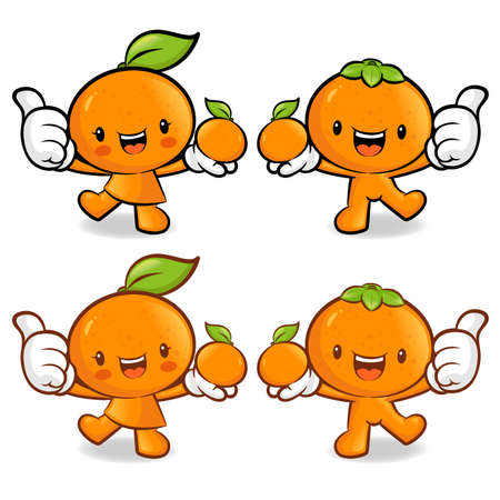 tangerine: Tangerine and Orange Couple characters to promote fruit selling. Fruit Character Design Series.