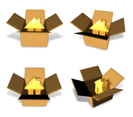 3D House icon inside a box. 3D Icon Design Series.