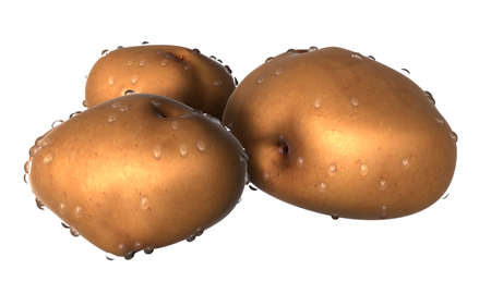 Three Brown potato covered with waterdrops. Foods and Dishes Series.
