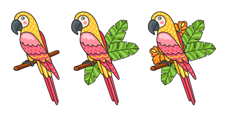 Macaw. Set of beautiful colorful parrots, surrounded tropical leaves and flowers. Vector illustration.  イラスト・ベクター素材