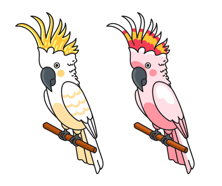 Yellow and pink cockatoos. Cute tropical birds. Vector illustration.