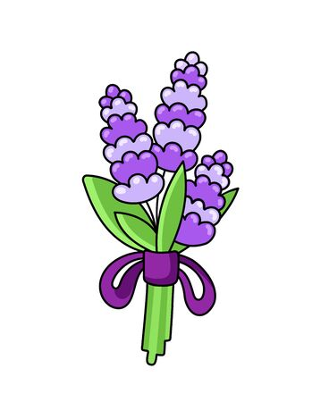 Bouquet of lavender, tied with a violet ribbon. Simple vector illustration.