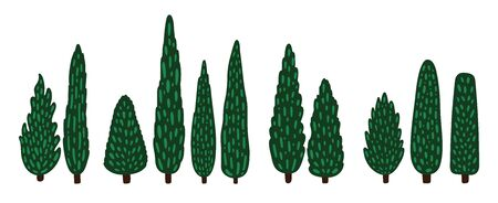 Set of decorative cartoon cypresses. Tall trees collection. Vector flat illustration.
