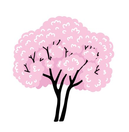 Blooming japanese sakura. Cherry blossom. Simple cartoon illustration. Illustration