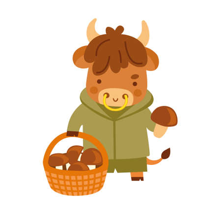 Cute little cow with a basket of mushrooms. Ox cartoon character. Kawaii bull. 2021 zodiac sign. New year animal. Vector illustration.