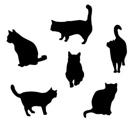 Cats collection - Vector silhouette. Vector