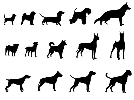 Set of dogs silhouette. Vector illustration. Vector