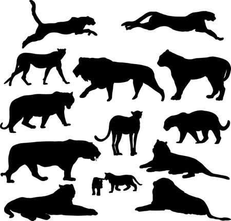 big cats silhouette collection - vector Vector