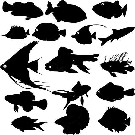 baits: fish silhouettes vector Illustration