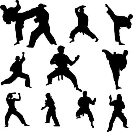 karate fighters Vector