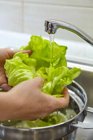 ingredients tap: Woman washing fresh green salad