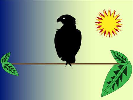 starve: Eagle on a branch