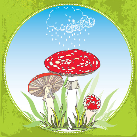 mycology: Amanita and rainy cloud. Poisonous red-cup Mushroom in the round frame