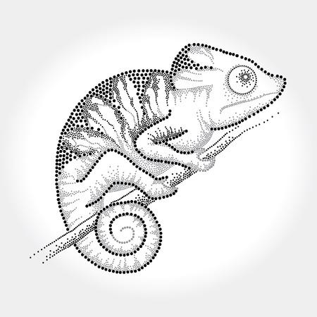 Dotted black Chameleon sitting on the branch Illustration