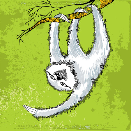 Smiling sloth hanging on a decorative branch