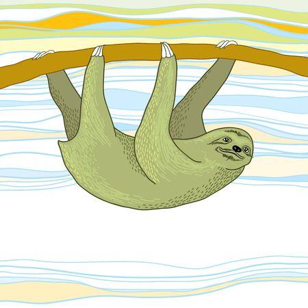 sloth: Pereza colgando de una rama Vectores