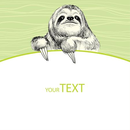 sloth: Pereza con la tarjeta vacía Vectores