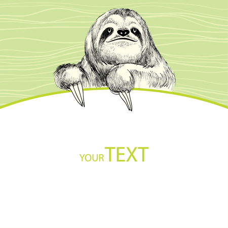 Sloth with empty card