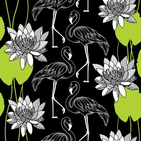 water lilies: Modelo incons�til con los flamencos de puntos en los lirios blancos y agua