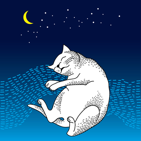 moonshine: Funny sleeping cat with moon and stars on the blue background. Series of comic cats