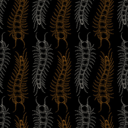 centipede: Seamless pattern with Centipede or millipede on the black background