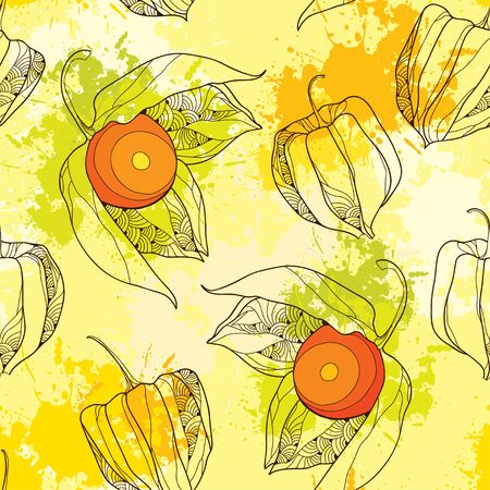 husks: Seamless pattern with Physalis or Cape gooseberry on the colorful blots background