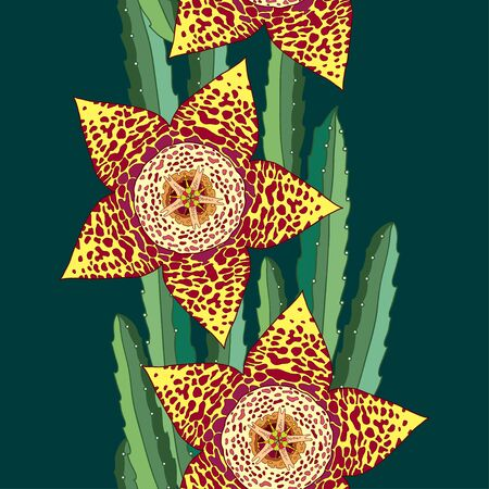Seamless pattern with Stapelia flowers and stems. Genus of low-growing stem succulent plants. Series of different succulents