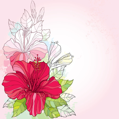 Bouquet with Chinese Hibiscus or Hibiscus rosa-sinensis and leaves on the pink background with pastel blots. Flower symbol of Hawaii.