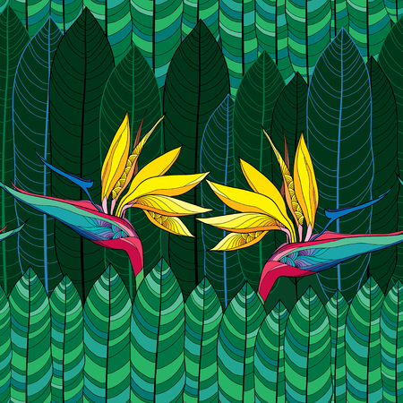 strelitzia: Seamless pattern with Strelitzia reginae or bird of paradise flower and green leaves Illustration