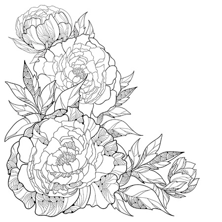 Bouquet with ornate peony flower and leaves isolated on white background. Floral elements in contour style.