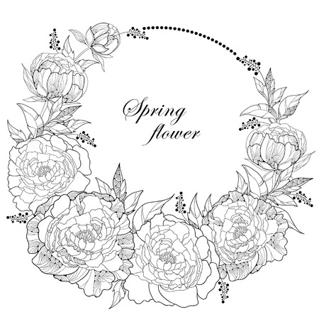 Round wreath with seven peony flowers and leaves with an empty place for text isolated on white background. Floral elements in contour style. Illustration