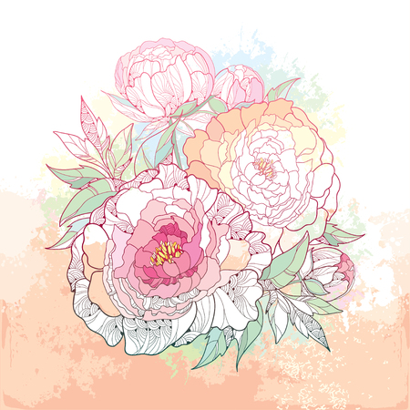 Round bouquet with five peony flower and leaves on the textured beige background with blots in pastel color. Floral elements in contour style.
