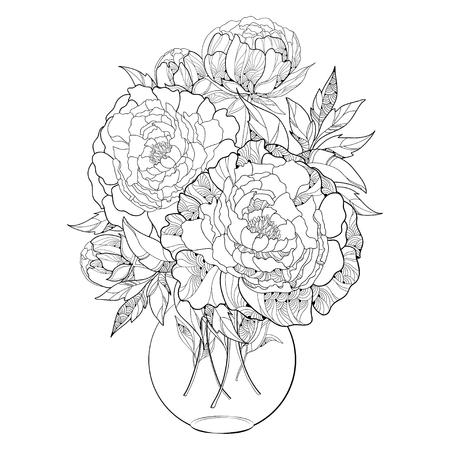 Blumenstrauß mit fünf verzierten Pfingstrose Blumen und Blätter in der runden transparenten Vase auf weißem Hintergrund. Blumenelemente in der Kontur Stil. Vektorgrafik