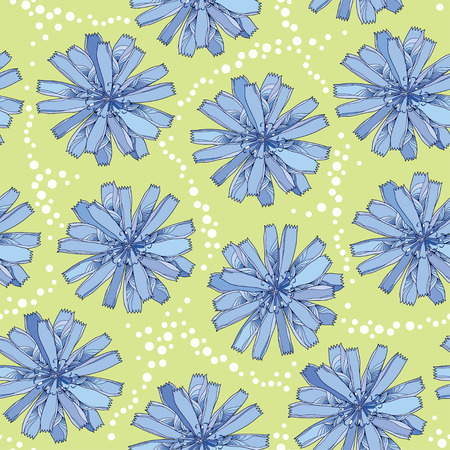 asteraceae: Seamless pattern with ornate chicory flower in blue on the green background with dots. Floral background in contour style