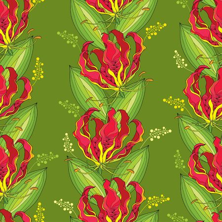 poisonous: Seamless pattern with Gloriosa superba or flame lily, tropical flower and striped leaf on the green background. Poisonous plant. National flower of Zimbabwe. Floral background in contour style. Illustration