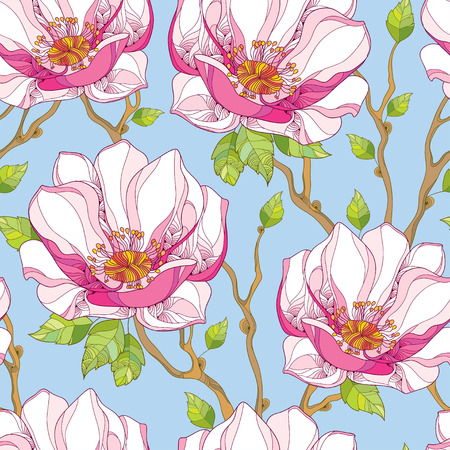 Seamless pattern with ornate magnolia flower in pink and green leaves on the blue background. Floral background in contour style.