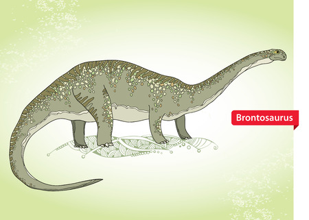 fossil: Vector illustration of Apatosaurus or Brontosaur or deseptive lizard on the green background. Series of prehistoric dinosaurs. Fossil animals and reptiles in contour style.