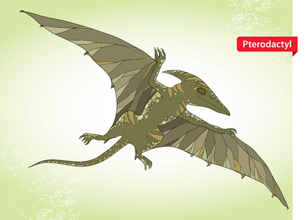 mesozoic: Vector illustration of Pterodactyl or wing lizard from suborders of pterosaurs on the green background. Series of prehistoric dinosaurs. Fossil animals and reptiles in contour style.