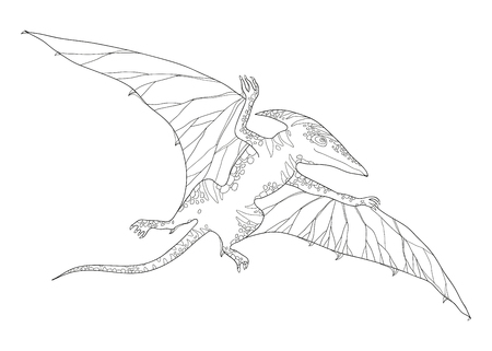 prehistoric animals: Vector illustration of Pterodactyl or wing lizard from suborders of pterosaurs isolated on white background. Series of prehistoric dinosaurs. Fossil animals and reptiles in contour style.