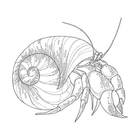 Vector illustratie van Hermit Crab in de rondte buikpotige shell op een witte achtergrond. Onderwater schaaldier in contour stijl voor kleurboek. Vector Illustratie