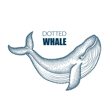 Vector illustration of dotted humpback whale in black isolated on white background. Maritime theme with whale for summer design. Marine elements in trendy dotwork style. Ilustrace