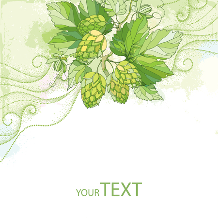 humulus: card with Hops or Humulus with ornate leaves and cones on the pastel background with dotted curls. Beer and brewery decor with hops. Organic elements in contour style for summer background.