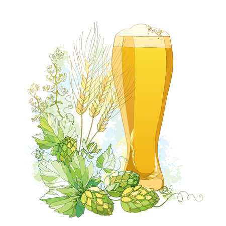 froth: glass of froth beer with ornate Hops and barley ears in pastel isolated on white. Contour hops, barley for Oktoberfest, beer and brewery decor. Beer elements in contour style for brewery design