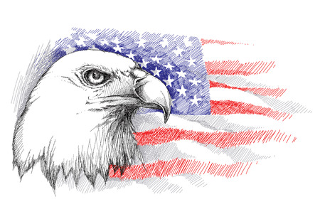 Croquis de tête d'aigle chauve sur le fond avec le drapeau américain isolé. Modèle isolé avec le drapeau et l'aigle du 4 juillet. Conception pour la fête de l'indépendance déclarée. Quatrième carte de voeux de juillet. Vecteurs