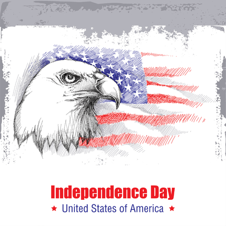 united stated: sketch of bald eagle head on the background with American flag isolated on white. Design for United Stated Independence Day. Background with flag and eagle for July 4. July fourth greeting card Illustration