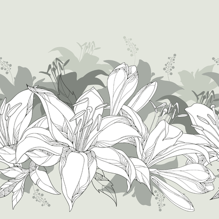 Seamless pattern with ornate white Lily flower, buds and leaves on the pastel gray background. Elegance floral background with lilies in contour style for summer design.  イラスト・ベクター素材