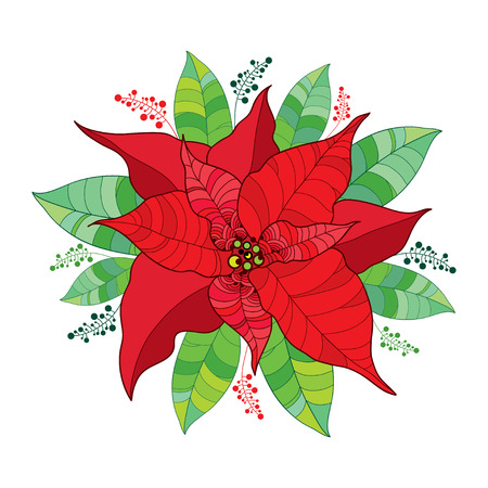Round Composition With Vector Poinsettia Flower Or Christmas Star In Red Isolated On White Outline And Leaves Of For Decor