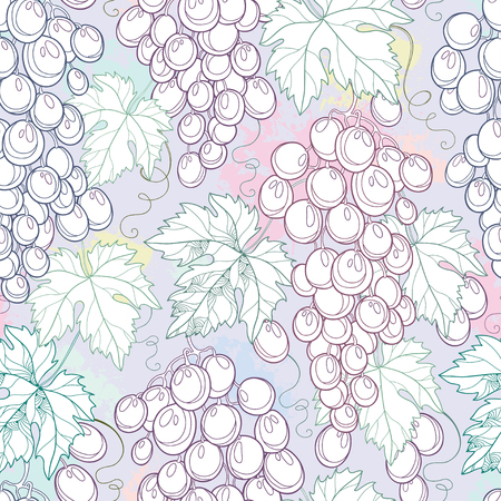wine background: Vector seamless pattern with bunch of grape and grape leaves on the pastel background. Outline design elements for wine and winery. Background with ornate fruits in contour style for summer design.