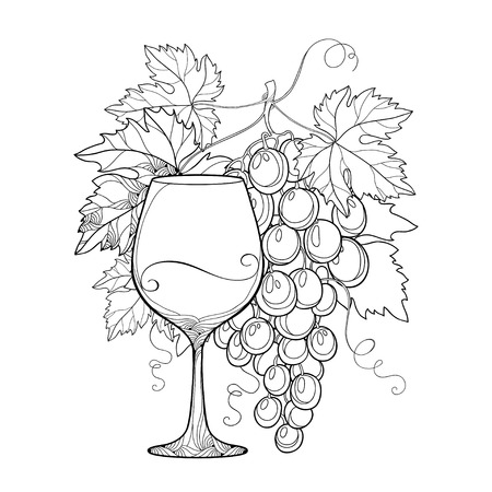 Vector bunch of grape, ornate grape leaves and wineglass in black isolated on white. Outline design elements for wine and winery. Fruit objects in contour style for coloring book and wine decor.