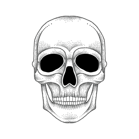 jowl: Vector illustration of dotted skull in black isolated on white background. Front view. Element for tattoo design or Halloween in dotwork style. Creative concept for tattooing and trash decor. Illustration